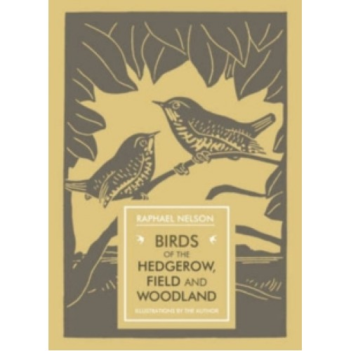 Birds of the Hedgerow-500x500