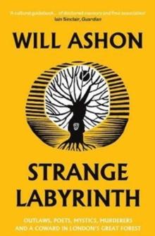 Strange Labyrinth